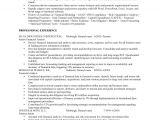 Sample Resume Of A Financial Analyst Financial Analyst Job Resume Sample Fastweb