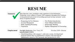Sample Resume Summary Resume Summary Examples