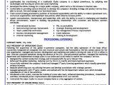 Sample Resume Vp Operations Vice President Of Operations Resume Template Premium