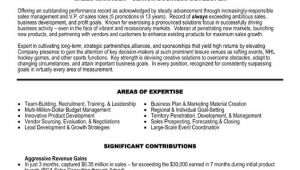 Sample Resume Vp Sales Vp Sales Resume Sample Template