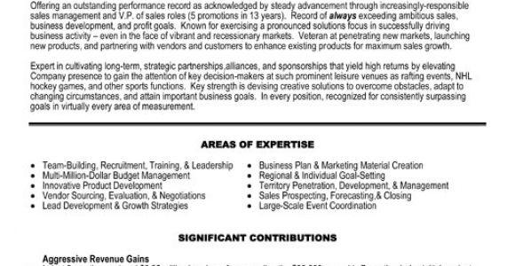 Sample Resume Vp Sales Vp Sales Resume Sample Template