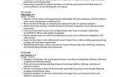 Sample Resume Vp Sales Vp Sales Resume Samples Velvet Jobs
