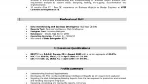 Sample Resume with Sap Experience Sap Bi Resume 5 Years Experience Sidemcicek Com
