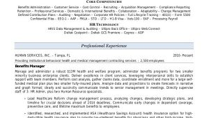 Sample Resume with Summary Statement 9 Sample Resume Summary Statements Sample Templates