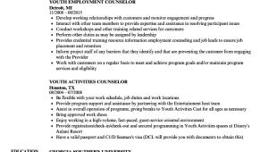 Sample Resume Youth Counselor Youth Counselor Resume Samples Velvet Jobs