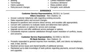 Sample Resumes for Customer Service Positions Customer Service Representative Resume Examples Free to