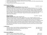Sample Resumes for Experienced It Professionals Resumes for Experienced Professionals Sample Professional