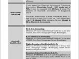 Sample Resumes for Experienced It Professionals Sample Resume for Experienced Professional Free Samples