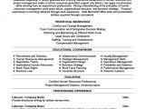 Sample Resumes for Hr Professionals Human Resources Professional Resume Template Premium