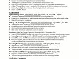 Sample Template Of Resume Usa Jobs Resume Builder Learnhowtoloseweight Net