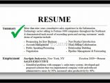 Samples Of Professional Summary for A Resume Professional Summary On Resume Project Scope Template