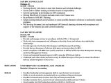 Sap Bpc Resume Samples Sap Bpc Resume Samples Velvet Jobs