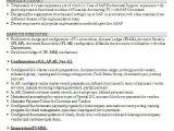 Sap Fico End User Resume Sample Cv format Samples