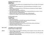 Sap Fico End User Resume Sample Sap Fico End User Resume Www Nyustraus org Exaple