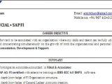 Sap Fico Resume Sample Pdf Sap Fico Resume format