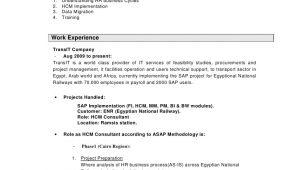 Sap Hcm Resume Sample Nashwa Mohammed Sap Hcm Consultant