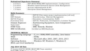 Sap Mdm Resume Samples Sap Mdm Resume Samples Resume Ideas