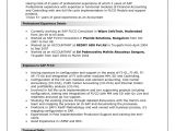 Sap Security Consultant Resume Samples Example Resumes for Sap Jobs Perfect Resume format