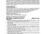 Sap Security Consultant Resume Samples Shakil Sap Security Resume 2