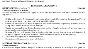 Senior Executive assistant Resumes Samples 7 Senior Administrative assistant Resume Templates Pdf