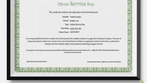 Service Animal Certificate Template 25 Certificate Templates Free Premium Templates
