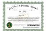 Service Animal Certificate Template Information On Emotional Support Dog Certificate Dog