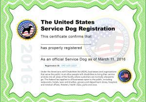 Service Animal Certificate Template Service Dog Certificate Pdf Hunecompany Com