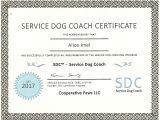 Service Dog Certificate Template Certificate Template In Ca Gallery Certificate Design