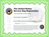 Service Dog Certificate Template Service Dog Certificate Pdf Hunecompany Com