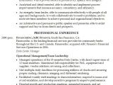 Service Industry Resume Template Resume Senior Position In the Financial Services Industry