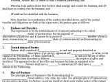Silent Partner Contract Template Free Silent Partner Agreement Template Tracenumberr Co