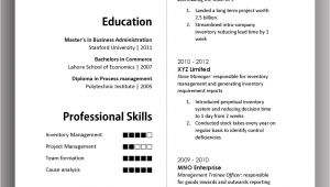 Simple and Effective Resume format Simple yet Elegant Cv Template to Get the Job Done Free