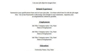 Simple Blank Resume Pdf 46 Blank Resume Templates Doc Pdf Free Premium