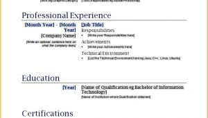 Simple Fill In the Blank Resume 9 Best Resume formats Free Samples Examples format