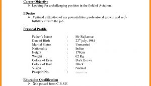 Simple Indian Resume format In Word 7 Cv Indian format theorynpractice
