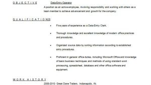 Simple Resume format for Data Entry Operator Data Entry Resume Template 8 Free Word Excel Pdf