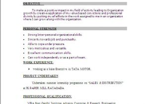 Simple Resume format for Freshers In Ms Word Resume Sample In Word Document Mba Marketing Sales