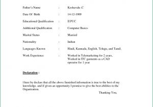 Simple Resume format for Freshers In Ms Word Simple Resume format for Freshers In Word File 137085913