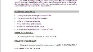 Simple Resume format for Job Word File Resume Sample In Word Document Mba Marketing Sales