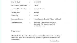 Simple Resume format Hd Images Pin by Jayantadebnath On Resume Fresher Basic Resume
