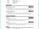 Simple Resume format Ms Word File Download Curriculum Vitae 2016 Laboite Cv Fr