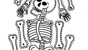 Skeleton Template to Cut Out 5 Ways to Teach Kids About their Body Cleverly Changing