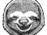 Sloth Mask Template Sloth Mask Printable Www Imgkid Com the Image Kid Has It
