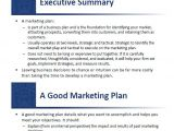 Small Business Marketing Plan Template Small Business Marketing Plan Template 13 Free Sample