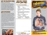 Smoking Brochure Template Cause Effect tobacco and the Body Pamphlet Primo