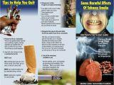 Smoking Brochure Template Smoking Cessation Brochures Tubezzz Porn Photos