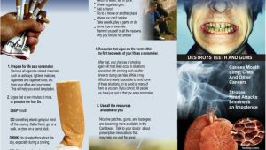 Smoking Brochure Template Smoking Cessation Brochures Tubezzz Porn Photos