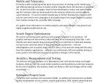 Social Media Influencer Contract Template social Media Marketing Plan Sample
