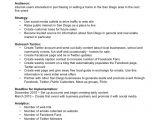 Social Media Marketing Proposal Template Free social Media Marketing Plan Template