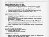 Software Engineer Resume Guidelines software Engineer Resume Sample Writing Tips Resume